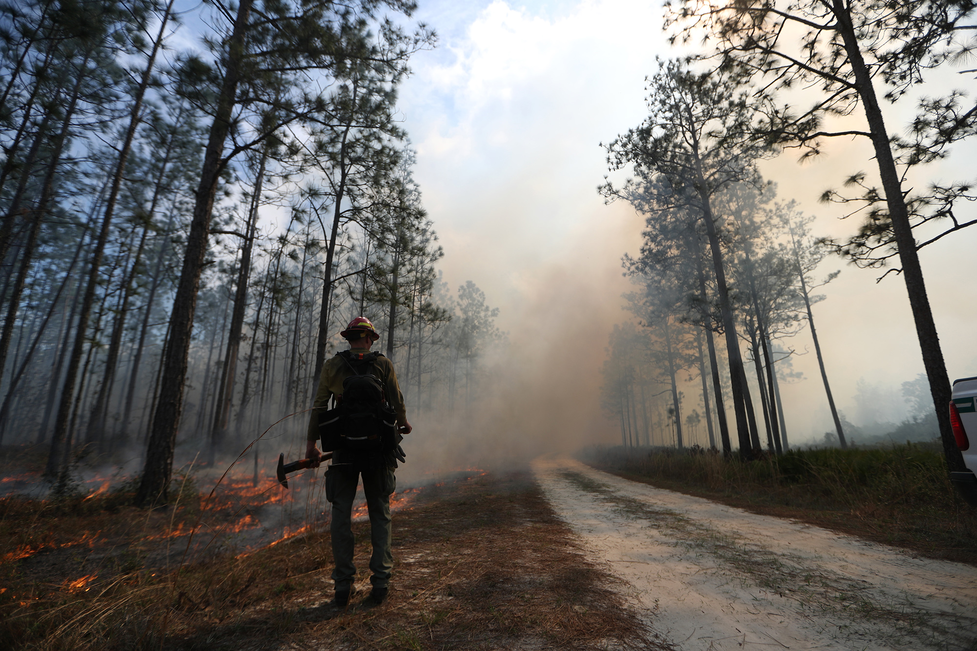 Controlled burn in the Apalachicola National Forest on Tuesday, Feb. 27, 2018.